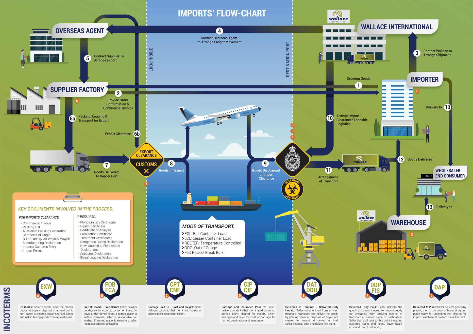 Importing Process Infographic Wallace International